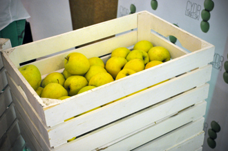 Jabłka stały się symbolem walki z sankcjami, ale znacznie większe problemy już teraz mają producenci papryki, czy kapusty (Fot. Daniel Paćkowski)