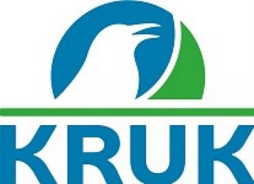 Tomasz Kałuziak, dyrektor ds. relacji inwestorskich i rozwoju KRUK SA - start 20 października o 11:00