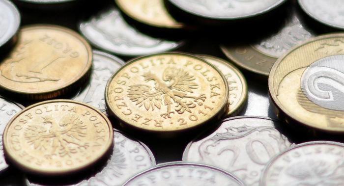 zloty, waluty, rpp,
