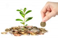 Zielone obligacje na ratunek planecie