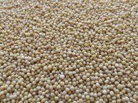 Surowce: Lipcowy spadek importu soi do Chin po wprowadzeniu ceł