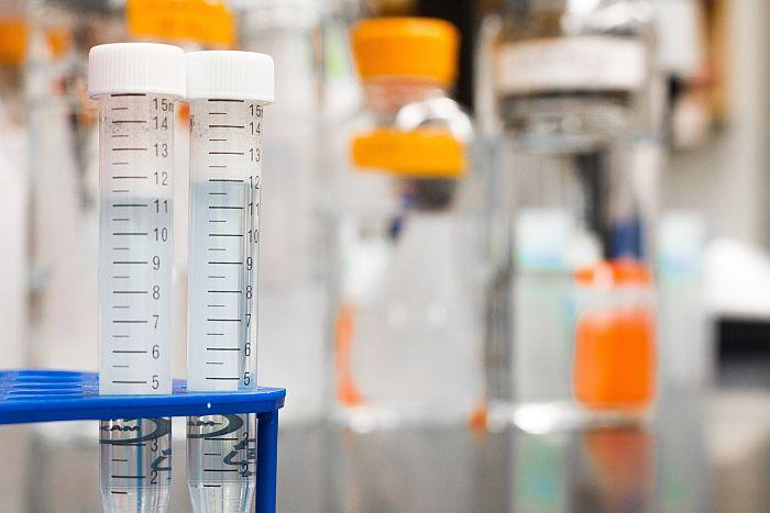 biomaxima, testy, koronawirus