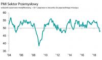 Polski przemysł hamuje. Styczniowa produkcja i eksport topniały najszybciej od 2009 r.