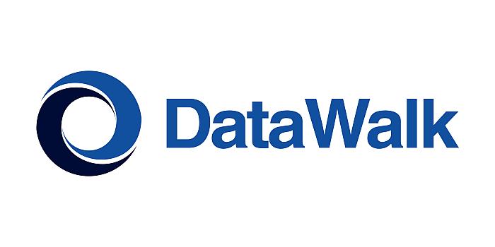 datawalk, wyniki, informatyka, akcje,