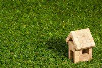 Co to jest mikrokredyt? Historia inicjatywy Muhammada Yunusa
