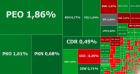 Zielono na GPW: Medicalghoritmics, Bioton, Wikana i banki Czarneckiego mocno w górę, CCC nadal spada